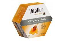 Vitaflor Jalea Real Mega Vital 20 Ampollas