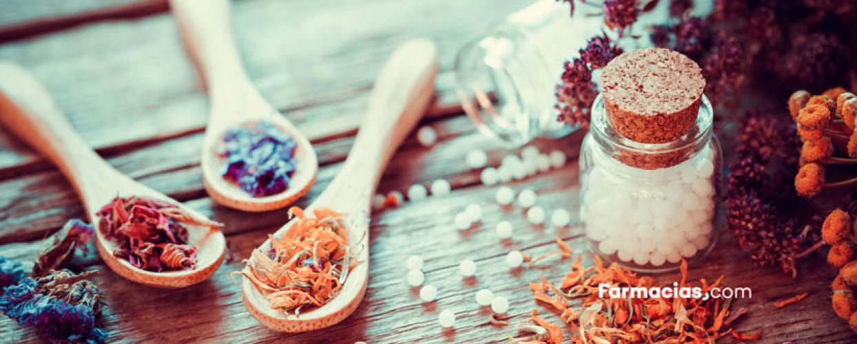Fitoterapia o ibuprofeno: plantas contra el dolor