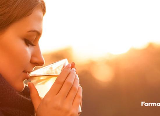 10 beneficios de la manzanilla que desconoces