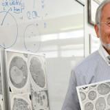 La autofagia se lleva el Premio Nobel de Medicina